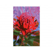 KE Design Tea Towel Waratah
