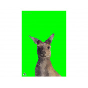 KE Design Tea Towel Kangaroo Green