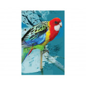 KE Design Tea Towel Rosella
