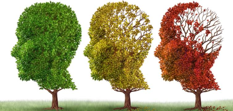 What is Alzheimer's disease and Dementia?