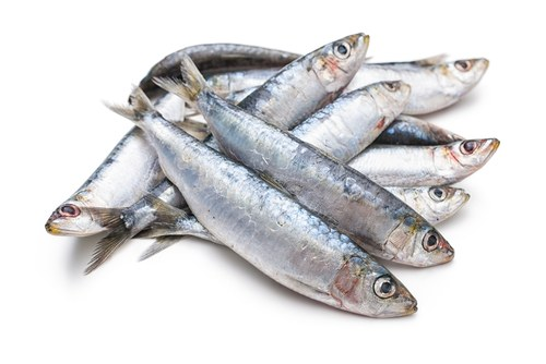 Confused about Carbohydrate, Protein and Fats? fish