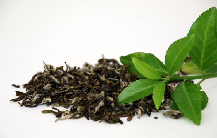 Green and black tea—what's the difference?
