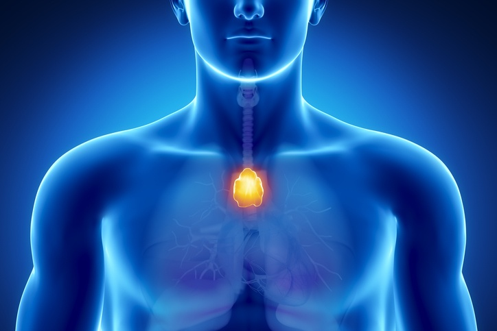 ​Myasthenia Gravis and the thymus gland