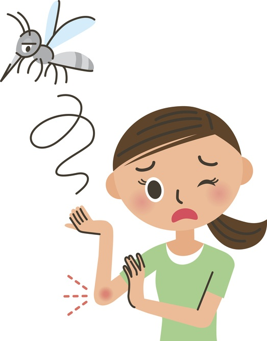 Stinging Insects: First Aid and Prevention