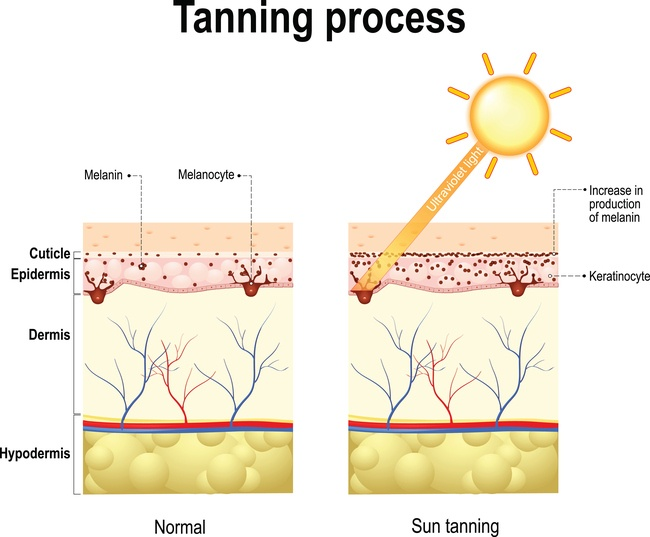 Harmful ways to tan